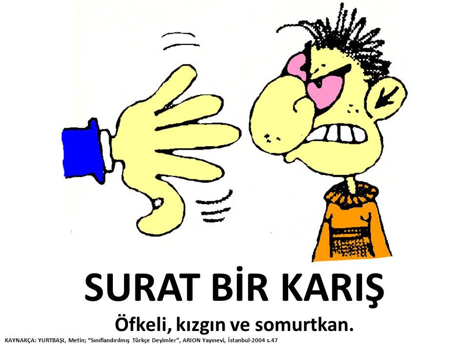 """SURAT BİR KARIŞ Öfkeli, kızgın ve somurtkan. KAYNAKÇA: YURTBAŞI, Metin; """"Sınıflandırılmış Türkçe Deyimler"""", ARION Yayınevi, İstanbul-2004 s.47"""
