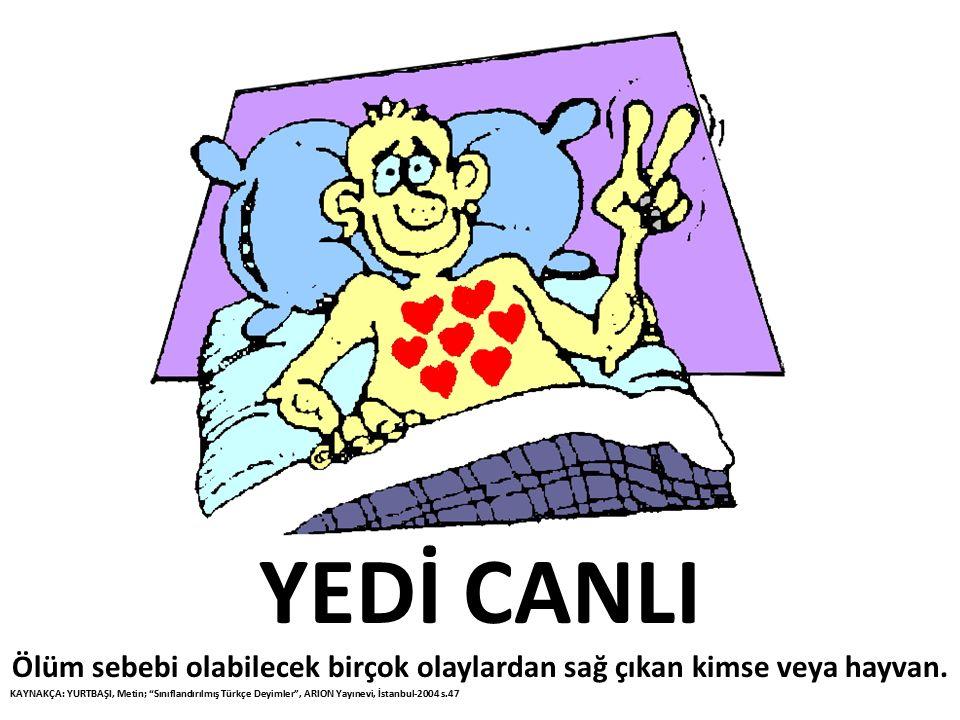 """YEDİ CANLI Ölüm sebebi olabilecek birçok olaylardan sağ çıkan kimse veya hayvan. KAYNAKÇA: YURTBAŞI, Metin; """"Sınıflandırılmış Türkçe Deyimler"""", ARION"""
