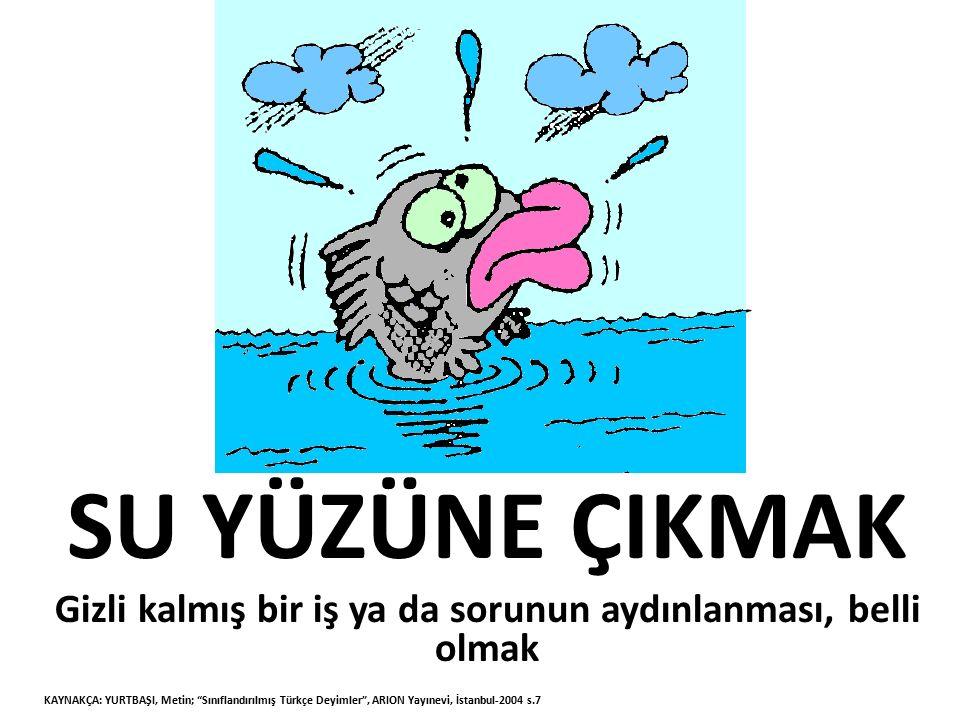 KARANLIĞA KURŞUN SIKMAK Bilgisizlik ve kararsızlıkla, sonunun nereye varacağını kestirmeden gelişigüzel davranışlarda bulunmak KAYNAKÇA: YURTBAŞI, Metin; Sınıflandırılmış Türkçe Deyimler , ARION Yayınevi, İstanbul-2004 s.60