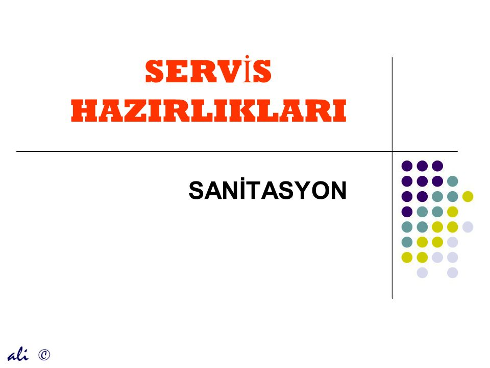 SERV İ S HAZIRLIKLARI SANİTASYON