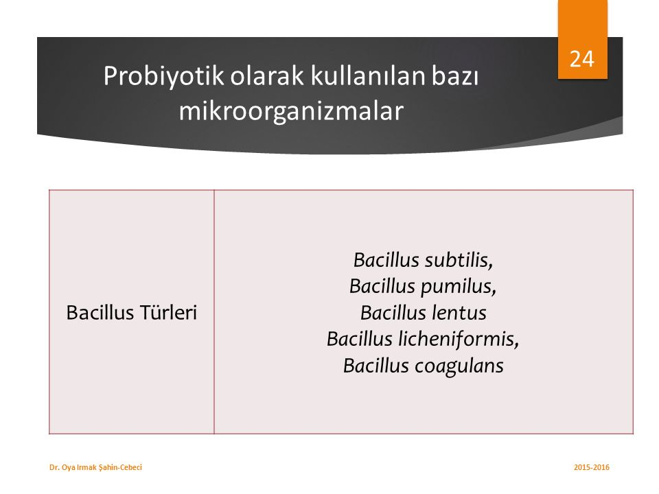 Probiyotik olarak kullanılan bazı mikroorganizmalar Bacillus Türleri Bacillus subtilis, Bacillus pumilus, Bacillus lentus Bacillus licheniformis, Bacillus coagulans 2015-2016 Dr.
