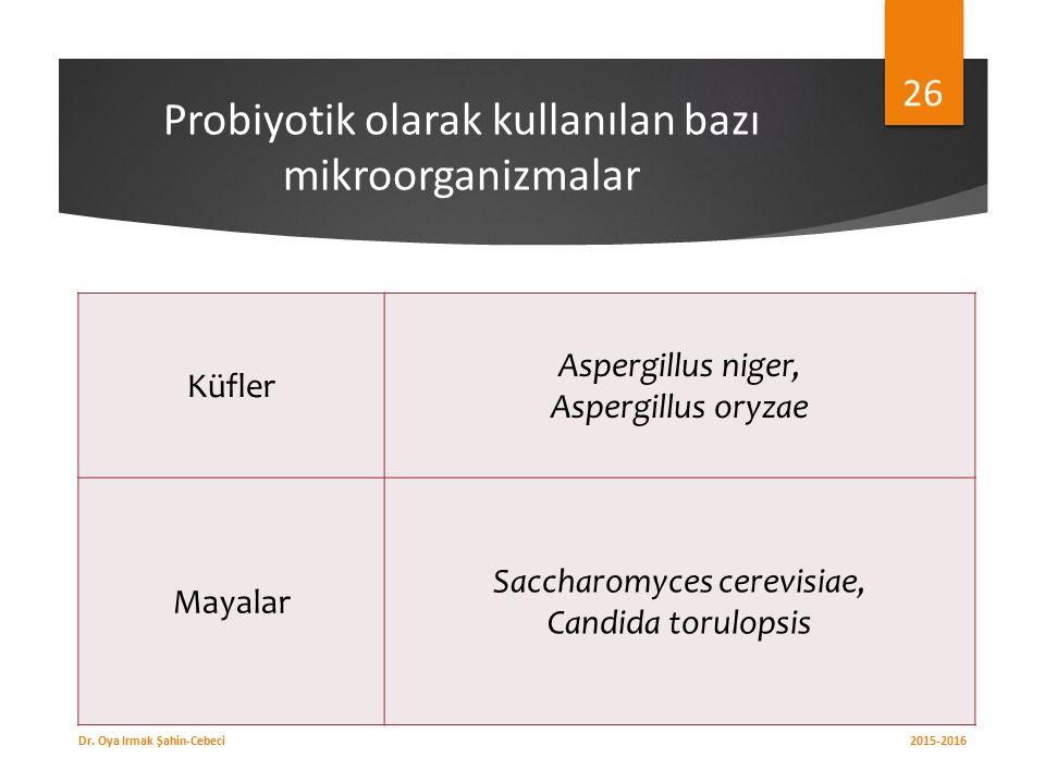 Probiyotik olarak kullanılan bazı mikroorganizmalar Küfler Aspergillus niger, Aspergillus oryzae Mayalar Saccharomyces cerevisiae, Candida torulopsis 2015-2016 Dr.