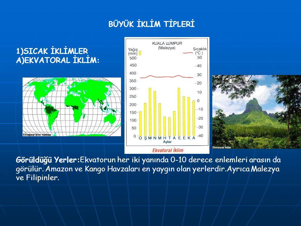 BÜYÜK İKLİM TİPLERİ 1)SICAK İKLİMLER A)EKVATORAL İKLİM: Görüldüğü Yerler:Ekvatorun her iki yanında 0-10 derece enlemleri arasın da görülür. Amazon ve