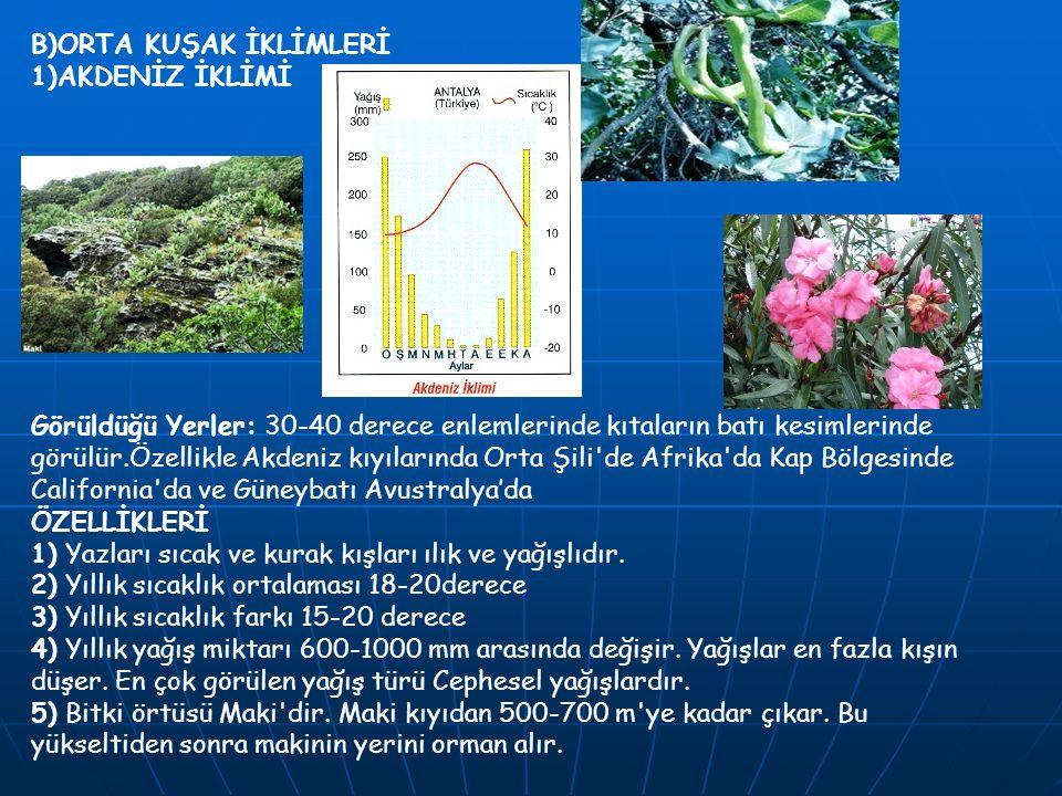 B)ORTA KUŞAK İKLİMLERİ 1)AKDENİZ İKLİMİ Görüldüğü Yerler: 30-40 derece enlemlerinde kıtaların batı kesimlerinde görülür.Özellikle Akdeniz kıyılarında
