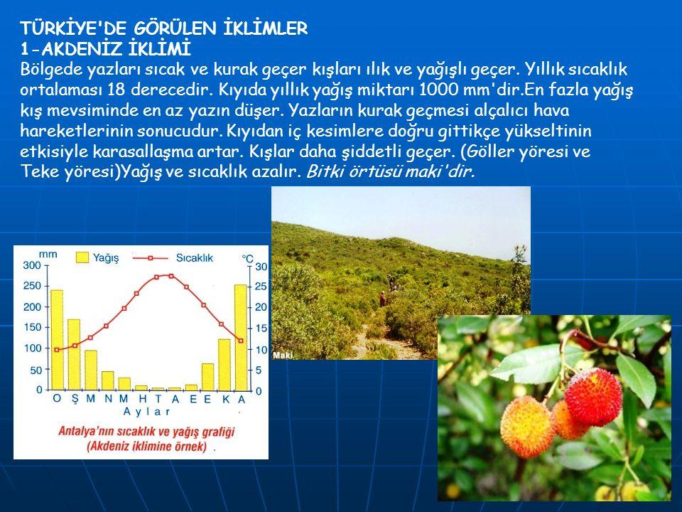 TÜRKİYE'DE GÖRÜLEN İKLİMLER 1-AKDENİZ İKLİMİ Bölgede yazları sıcak ve kurak geçer kışları ılık ve yağışlı geçer. Yıllık sıcaklık ortalaması 18 dereced