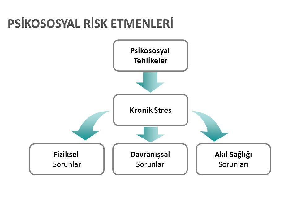 Psikososyal Tehlikeler Kronik Stres Fiziksel Sorunlar Davranışsal Sorunlar Akıl Sağlığı Sorunları