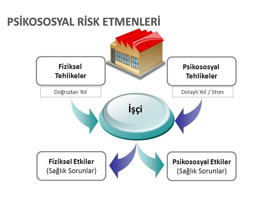 Fiziksel Tehlikeler Psikososyal Tehlikeler Fiziksel Etkiler (Sağlık Sorunlar) Psikososyal Etkiler (Sağlık Sorunlar) İşçi Doğrudan YolDolaylı Yol / Str