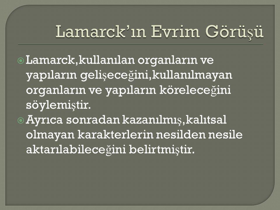  Lamarck,kullanılan organların ve yapıların geli ş ece ğ ini,kullanılmayan organların ve yapıların körelece ğ ini söylemi ş tir.
