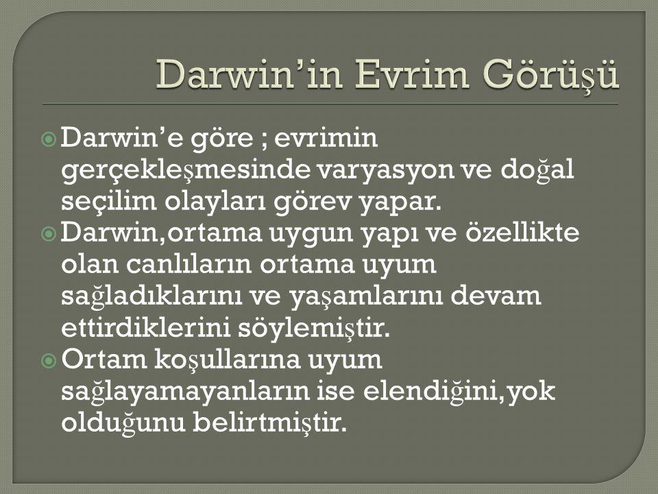  Darwin'e göre ; evrimin gerçekle ş mesinde varyasyon ve do ğ al seçilim olayları görev yapar.