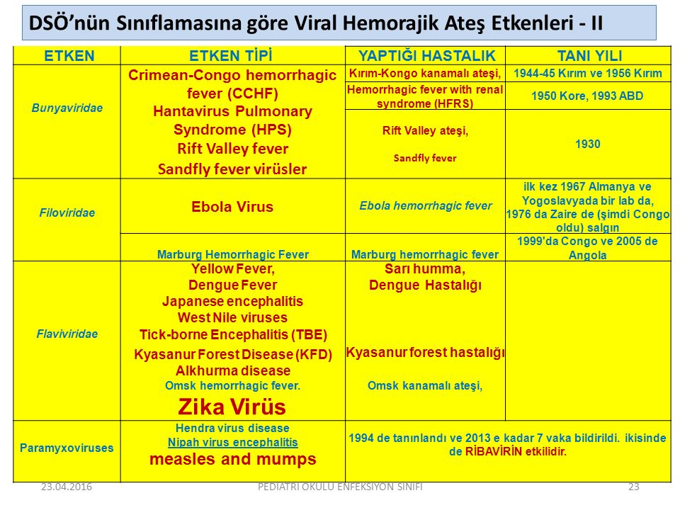 23.04.2016PEDİATRİ OKULU ENFEKSİYON SINIFI23 ETKENETKEN TİPİ YAPTIĞI HASTALIK TANI YILI Bunyaviridae Crimean-Congo hemorrhagic fever (CCHF) Hantavirus Pulmonary Syndrome (HPS) Rift Valley fever Sandfly fever virüsler Kırım-Kongo kanamalı ateşi,1944-45 Kırım ve 1956 Kırım Hemorrhagic fever with renal syndrome (HFRS) 1950 Kore, 1993 ABD Rift Valley ateşi, Sandfly fever 1930 Filoviridae Ebola Virus Ebola hemorrhagic fever ilk kez 1967 Almanya ve Yogoslavyada bir lab da, 1976 da Zaire de (şimdi Congo oldu) salgın Marburg Hemorrhagic FeverMarburg hemorrhagic fever 1999 da Congo ve 2005 de Angola Flaviviridae Yellow Fever,Sarı humma, Dengue FeverDengue Hastalığı Japanese encephalitis West Nile viruses Tick-borne Encephalitis (TBE) Kyasanur Forest Disease (KFD) Kyasanur forest hastalığı Alkhurma disease Omsk hemorrhagic fever.Omsk kanamalı ateşi, Zika Virüs Paramyxoviruses Hendra virus disease Nipah virus encephalitis measles and mumps 1994 de tanınlandı ve 2013 e kadar 7 vaka bildirildi.