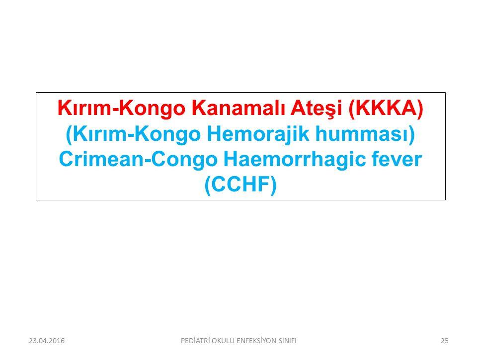 Kırım-Kongo Kanamalı Ateşi (KKKA) (Kırım-Kongo Hemorajik humması) Crimean-Congo Haemorrhagic fever (CCHF) 23.04.2016PEDİATRİ OKULU ENFEKSİYON SINIFI25