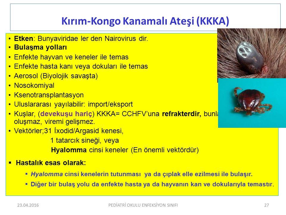Kırım-Kongo Kanamalı Ateşi (KKKA) Etken: Bunyaviridae ler den Nairovirus dir. Bulaşma yolları Enfekte hayvan ve keneler ile temas Enfekte hasta kanı v