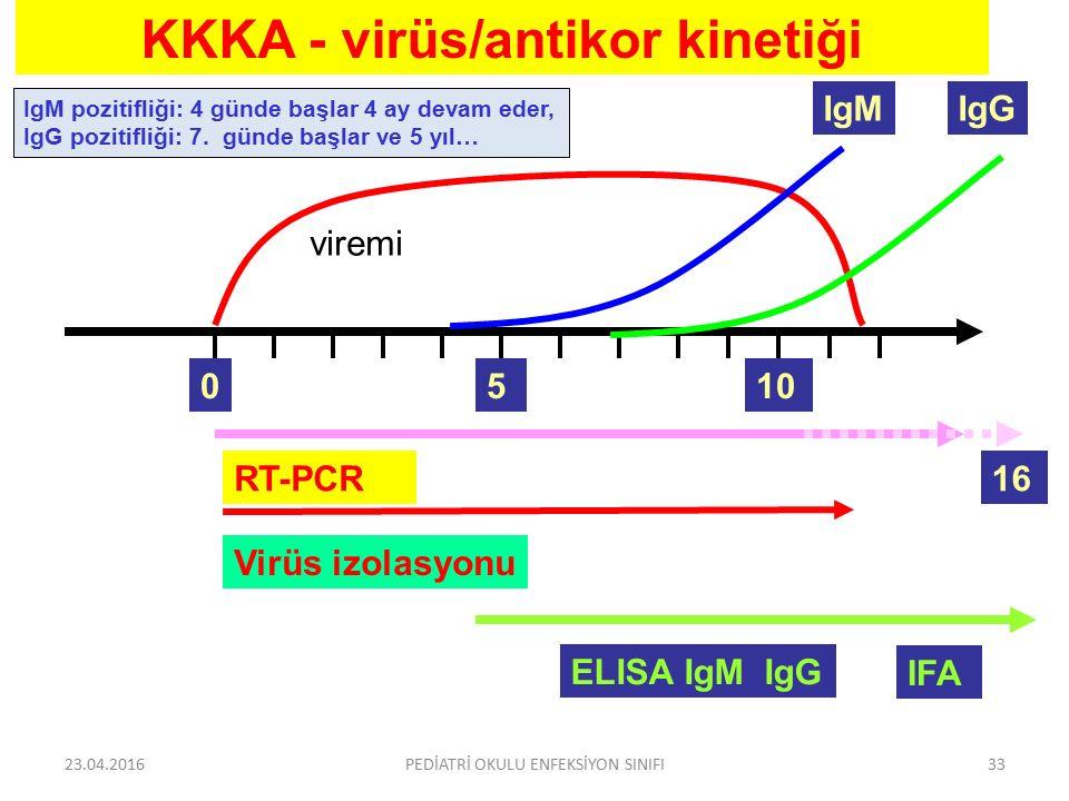 viremi 5 IgM RT-PCR ELISA IgM IgG IFA KKKA - virüs/antikor kinetiği Virüs izolasyonu 010 IgG 16 IgM pozitifliği: 4 günde başlar 4 ay devam eder, IgG p