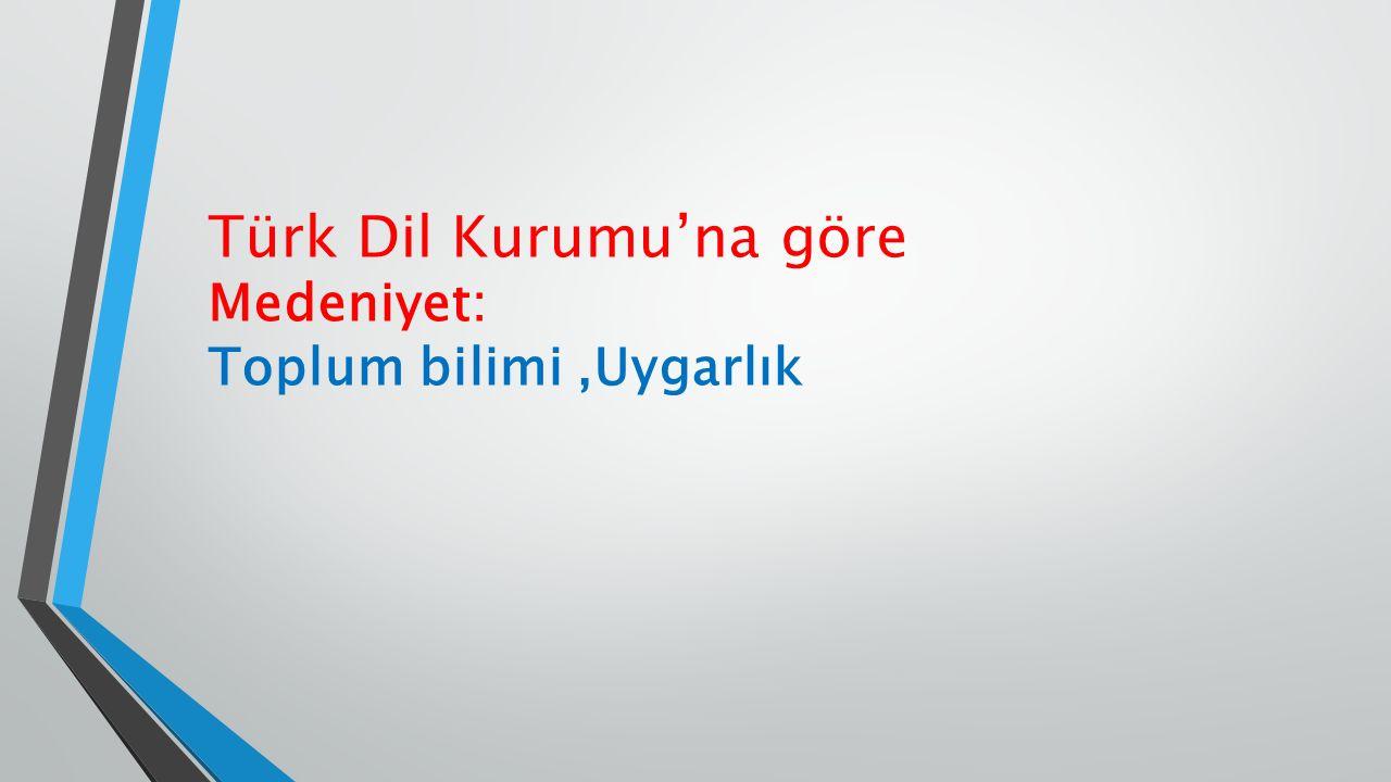 Türk Dil Kurumu'na göre Medeniyet: Toplum bilimi,Uygarlık