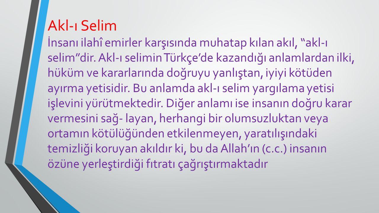 """Akl-ı Selim İnsanı ilahî emirler karşısında muhatap kılan akıl, """"akl-ı selim""""dir. Akl-ı selimin Türkçe'de kazandığı anlamlardan ilki, hüküm ve kararla"""