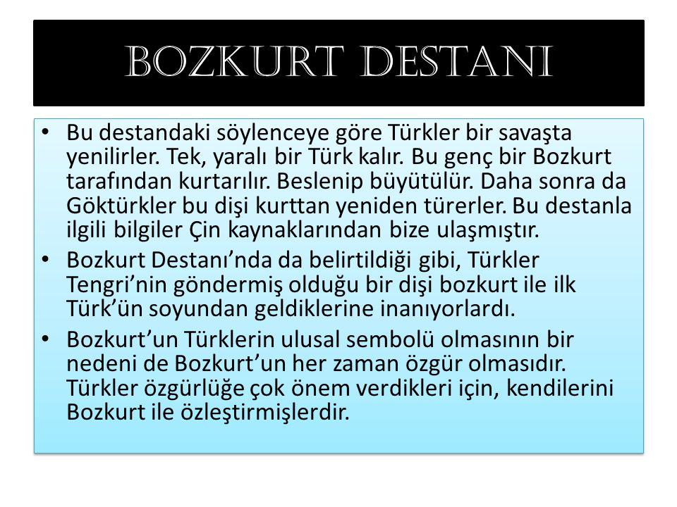 Bozkurt destanı Bu destandaki söylenceye göre Türkler bir savaşta yenilirler. Tek, yaralı bir Türk kalır. Bu genç bir Bozkurt tarafından kurtarılır.