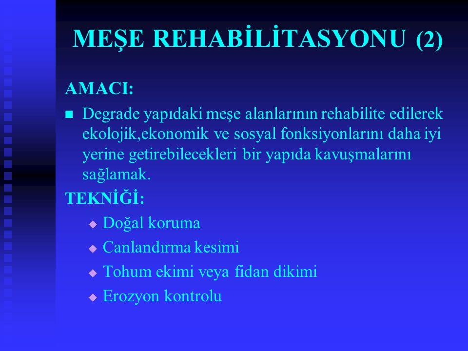 MEŞE REHABİLİTASYONU (2) AMACI: Degrade yapıdaki meşe alanlarının rehabilite edilerek ekolojik,ekonomik ve sosyal fonksiyonlarını daha iyi yerine getirebilecekleri bir yapıda kavuşmalarını sağlamak.