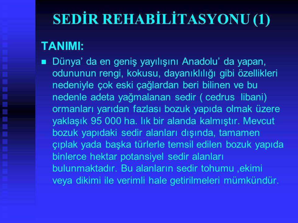 SEDİR REHABİLİTASYONU (1) TANIMI: Dünya' da en geniş yayılışını Anadolu' da yapan, odununun rengi, kokusu, dayanıklılığı gibi özellikleri nedeniyle ço