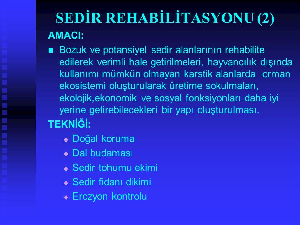 SEDİR REHABİLİTASYONU (2) AMACI: Bozuk ve potansiyel sedir alanlarının rehabilite edilerek verimli hale getirilmeleri, hayvancılık dışında kullanımı m