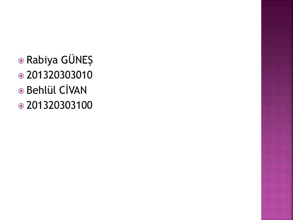  Rabiya GÜNEŞ  201320303010  Behlül CİVAN  201320303100