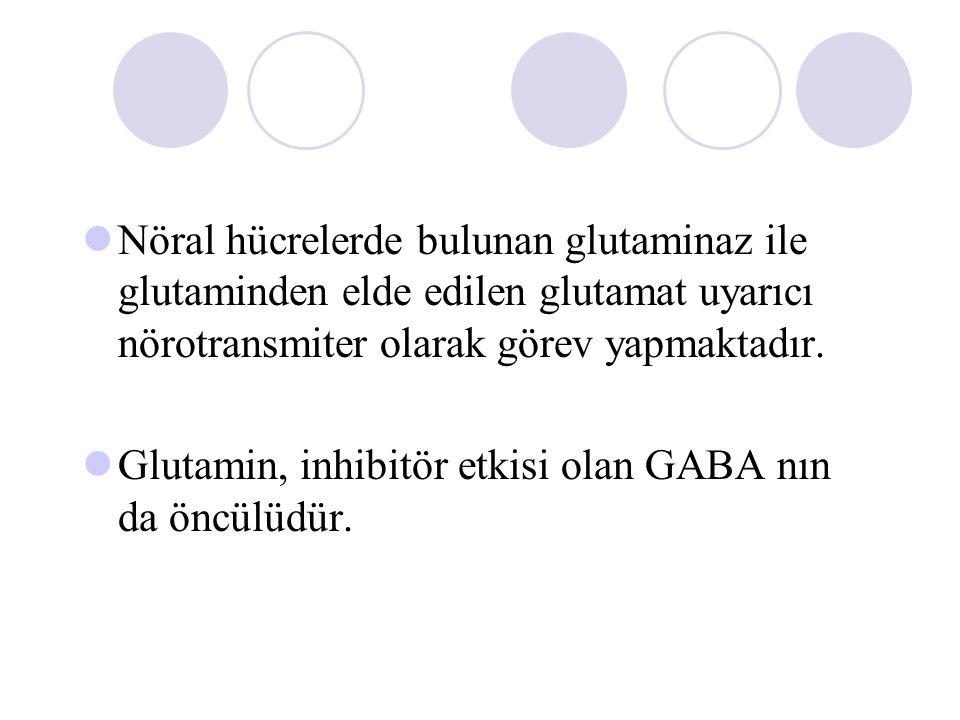 Nöral hücrelerde bulunan glutaminaz ile glutaminden elde edilen glutamat uyarıcı nörotransmiter olarak görev yapmaktadır. Glutamin, inhibitör etkisi o