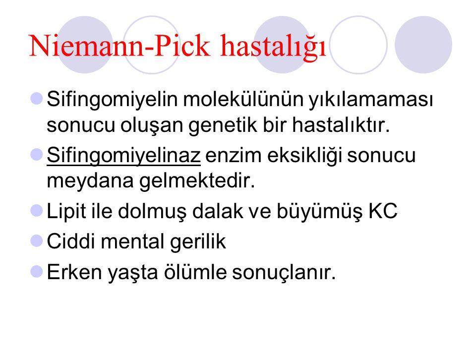 Niemann-Pick hastalığı Sifingomiyelin molekülünün yıkılamaması sonucu oluşan genetik bir hastalıktır. Sifingomiyelinaz enzim eksikliği sonucu meydana