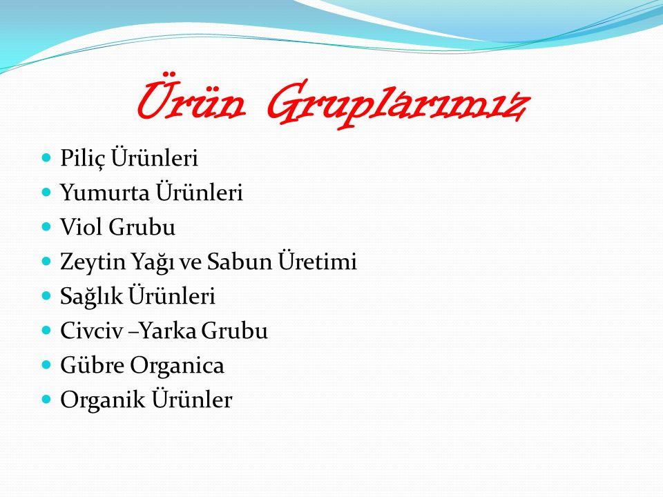 Ürün Gruplarımız Piliç Ürünleri Yumurta Ürünleri Viol Grubu Zeytin Yağı ve Sabun Üretimi Sağlık Ürünleri Civciv –Yarka Grubu Gübre Organica Organik Ürünler