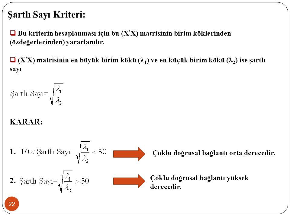 21 UYGULAMA: Aynı örnek için Klein kriteri ile çoklu doğrusal bağlantı sorununu inceleyiniz.
