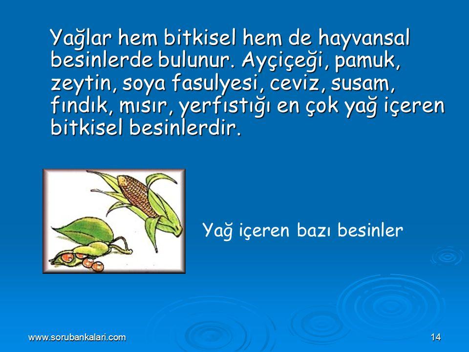 www.sorubankalari.com14 Yağlar hem bitkisel hem de hayvansal besinlerde bulunur.