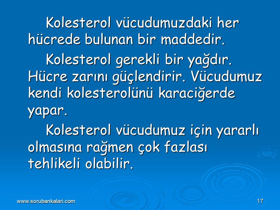 www.sorubankalari.com17 Kolesterol vücudumuzdaki her hücrede bulunan bir maddedir.