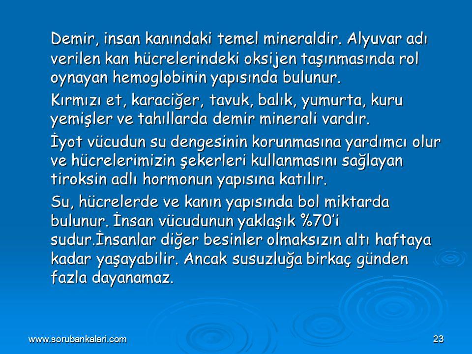 www.sorubankalari.com23 Demir, insan kanındaki temel mineraldir.