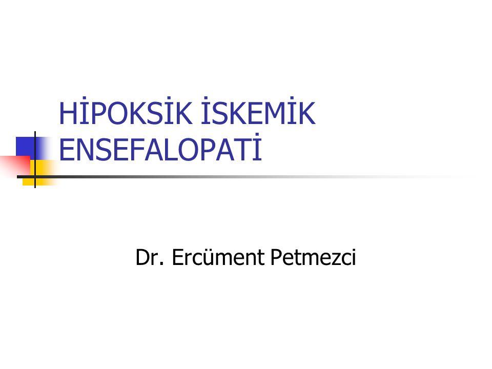 HİPOKSİK İSKEMİK ENSEFALOPATİ Dr. Ercüment Petmezci