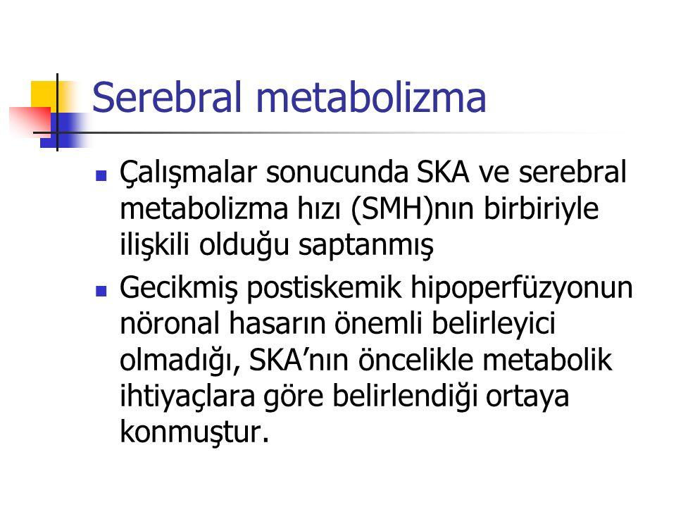 Serebral metabolizma Çalışmalar sonucunda SKA ve serebral metabolizma hızı (SMH)nın birbiriyle ilişkili olduğu saptanmış Gecikmiş postiskemik hipoperf