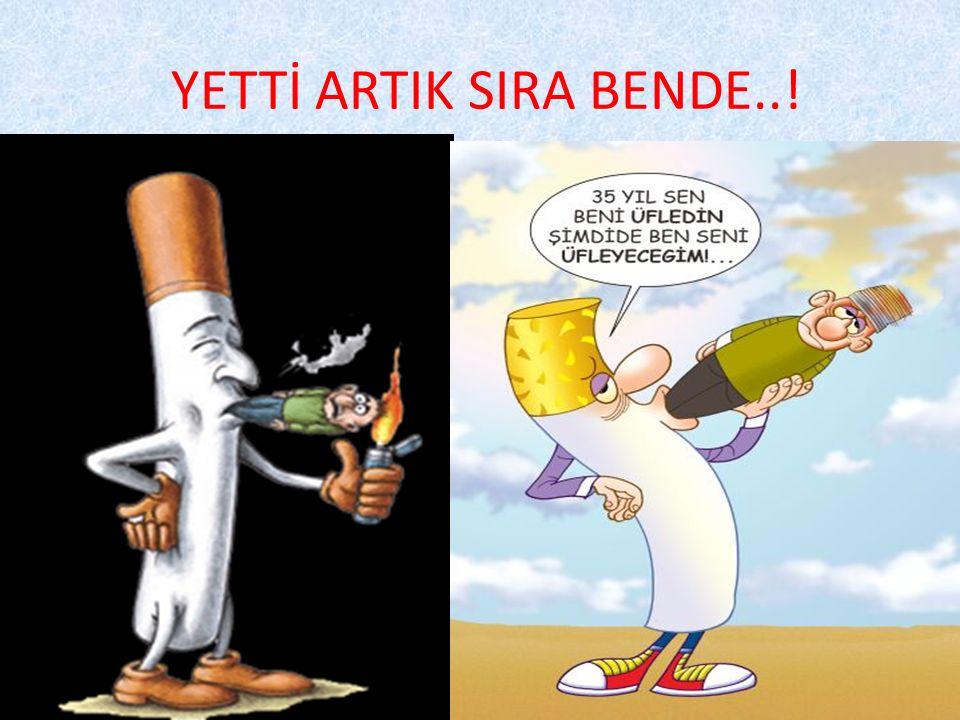 Sigara günümüzde yaygın olarak kağıda sarılarak kullanılan M.Ö ve 18.