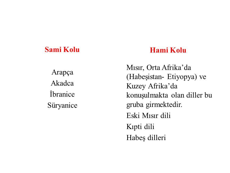 Sami Kolu Arapça Akadca İbranice Süryanice Hami Kolu Mısır, Orta Afrika'da (Habeşistan- Etiyopya) ve Kuzey Afrika'da konuşulmakta olan diller bu gruba girmektedir.