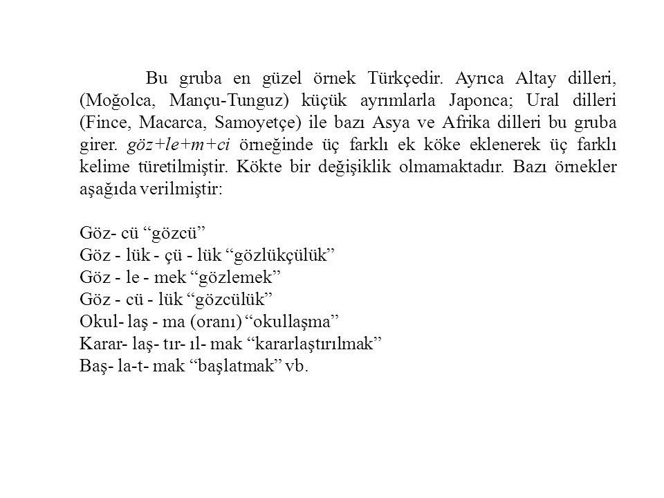 Bu gruba en güzel örnek Türkçedir.