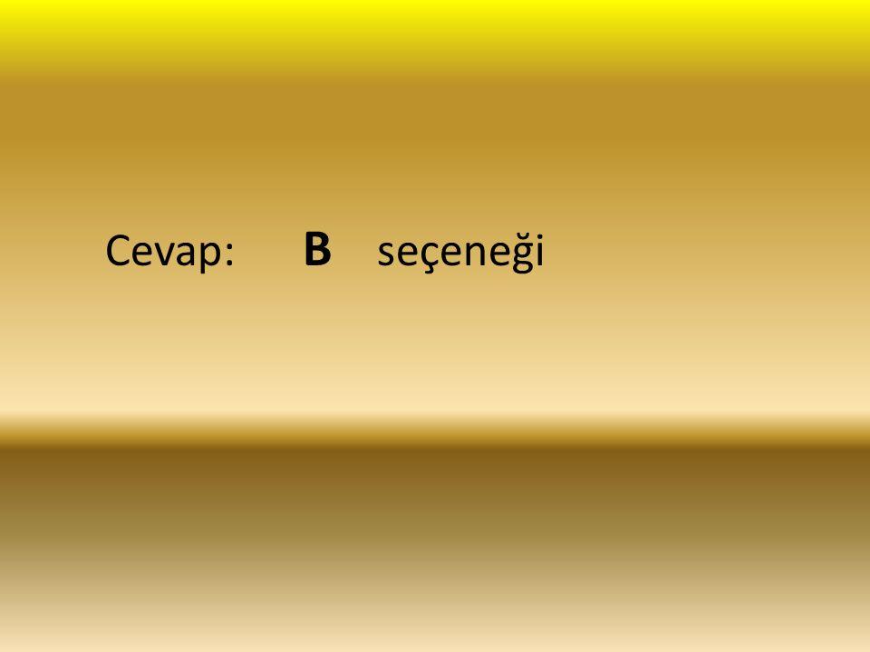 Cevap: B seçeneği