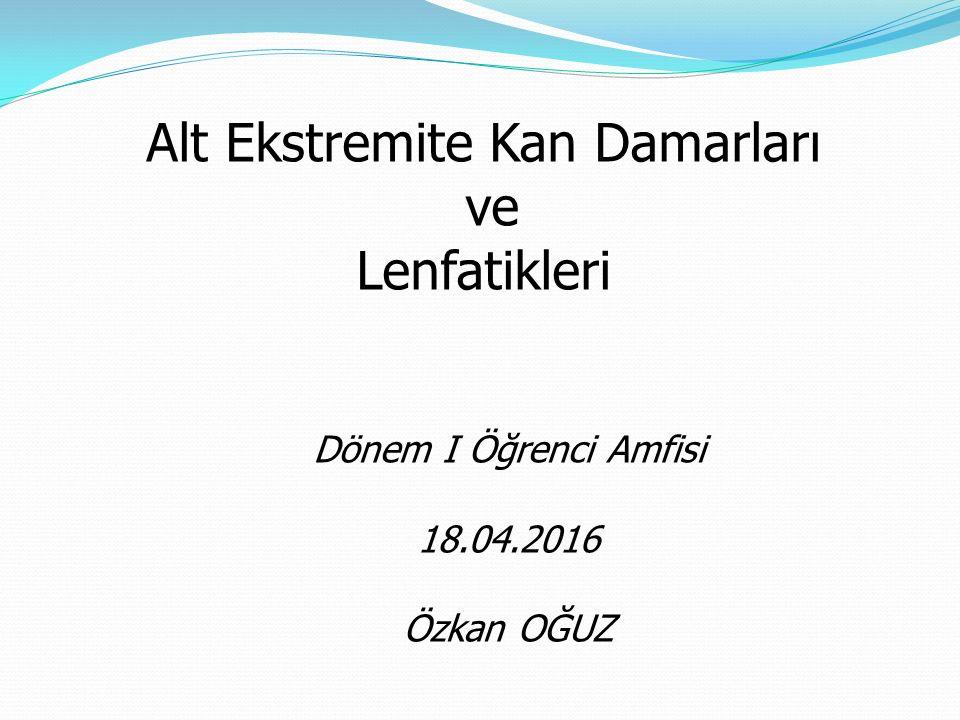 Alt Ekstremite Kan Damarları ve Lenfatikleri Dönem I Öğrenci Amfisi 18.04.2016 Özkan OĞUZ
