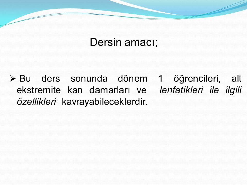 A.Dorsalis Pedis A.