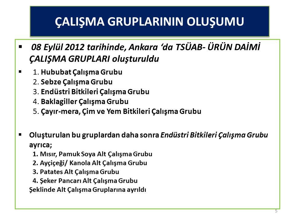 ÇALIŞMA GRUPLARININ OLUŞUMU  08 Eylül 2012 tarihinde, Ankara 'da TSÜAB- ÜRÜN DAİMİ ÇALIŞMA GRUPLARI oluşturuldu  1. Hububat Çalışma Grubu 2. Sebze Ç