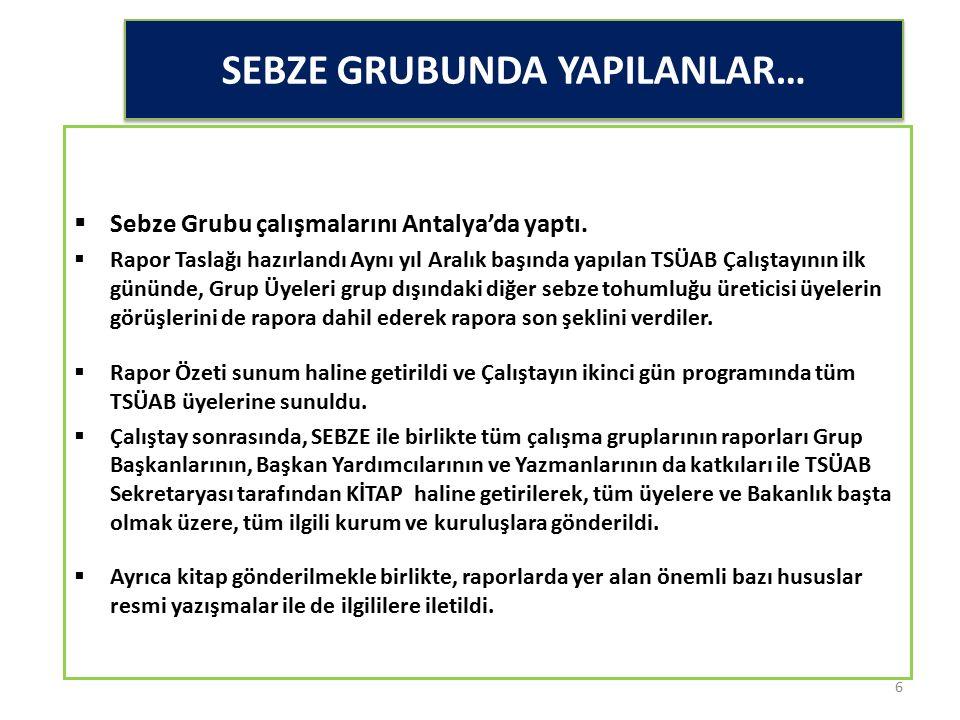 SEBZE GRUBUNDA YAPILANLAR…  Sebze Grubu çalışmalarını Antalya'da yaptı.  Rapor Taslağı hazırlandı Aynı yıl Aralık başında yapılan TSÜAB Çalıştayının
