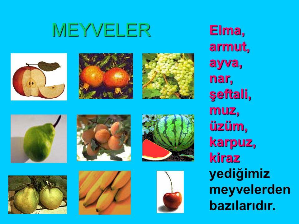 Meyve ve sebzeler Meyve ve sebzeler vitamin deposudur.