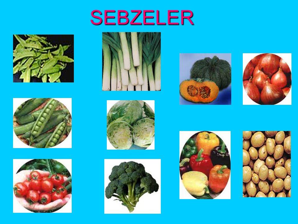 MEYVELER Elma,armut,ayva,nar,şeftali,muz,üzüm,karpuz,kiraz yediğimiz meyvelerden bazılarıdır.