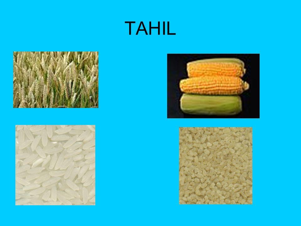 TAHIL Makarna,ekmek,pasta,pilav gibi yiyeceklerMakarna,ekmek,pasta,pilav gibi yiyecekler enerji sağlar.