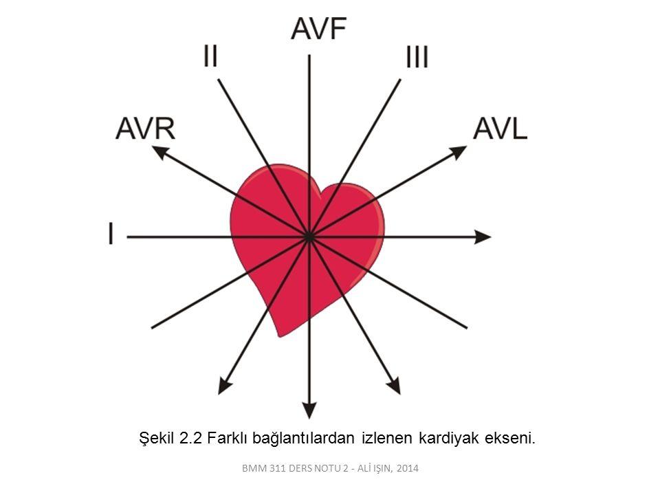 BMM 311 DERS NOTU 2 - ALİ IŞIN, 2014 Şekil 2.2 Farklı bağlantılardan izlenen kardiyak ekseni.