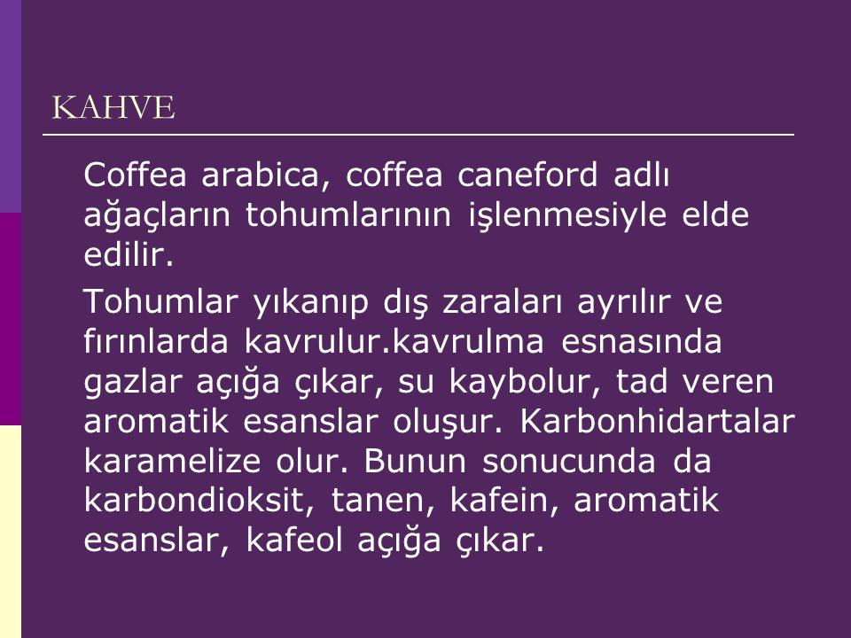 KAHVE Coffea arabica, coffea caneford adlı ağaçların tohumlarının işlenmesiyle elde edilir.