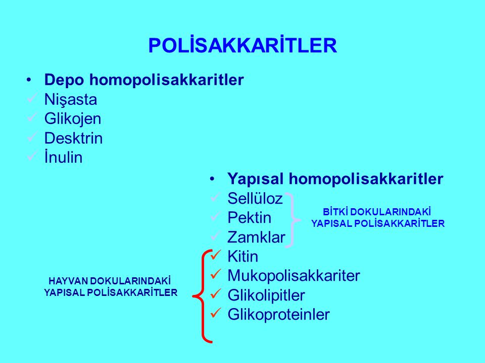 Depo homopolisakkaritler Nişasta Glikojen Desktrin İnulin Yapısal homopolisakkaritler Sellüloz Pektin Zamklar Kitin Mukopolisakkariter Glikolipitler G