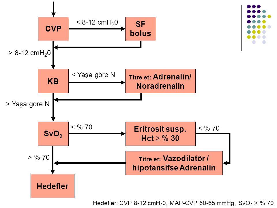 CVP KB SF bolus SvO 2 Titre et: Adrenalin/ Noradrenalin Eritrosit susp. Hct  % 30 Titre et: Vazodilatör / hipotansifse Adrenalin Hedefler < 8-12 cmH