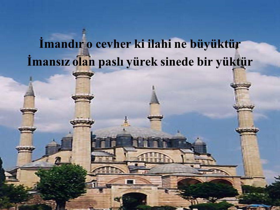 İSTİKLAL ŞAİRİMİZ MEHMET AKİF ERSOY'DAN.........BEYİTLER......... (kaynak:safahat) www.behcetoloji.com Behçet Gündüz izmir