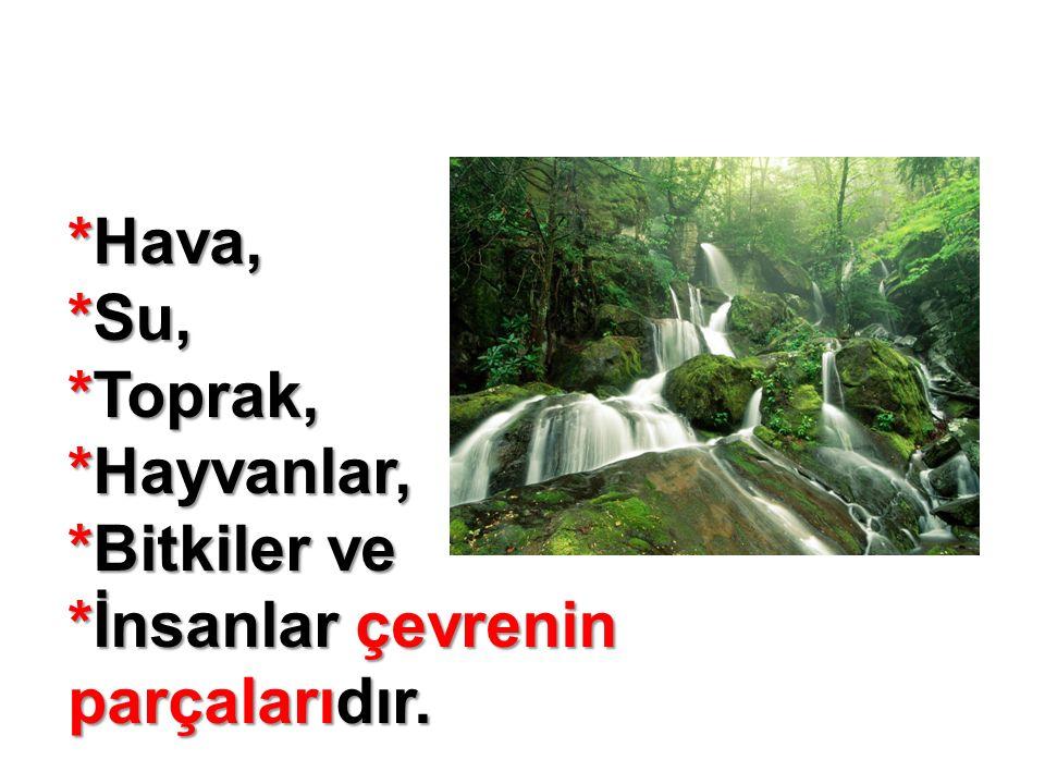 *Hava, *Su, *Toprak, *Hayvanlar, *Bitkiler ve *İnsanlar çevrenin parçalarıdır.